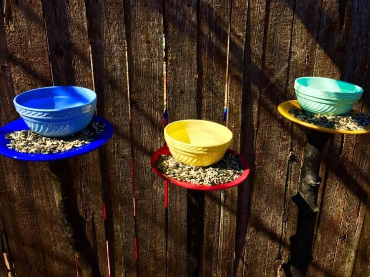 feo-blog-bird-feeders